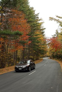 Fall drive in Acadia