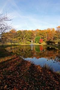 Fall at Meadowlark Gardens
